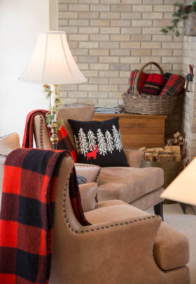 living room with winter blankets