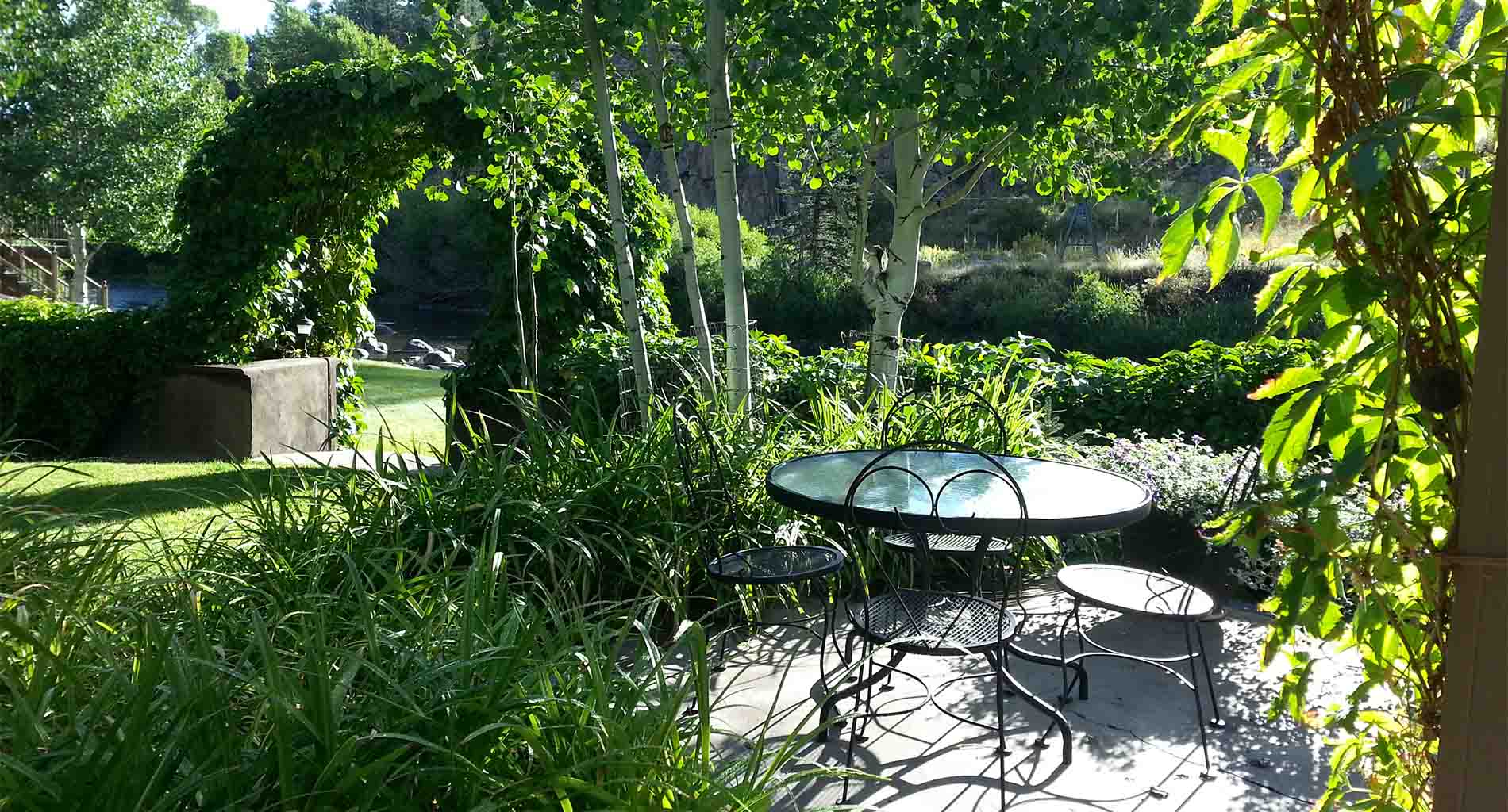 Early morning on the patio with flowers, green trees and vines
