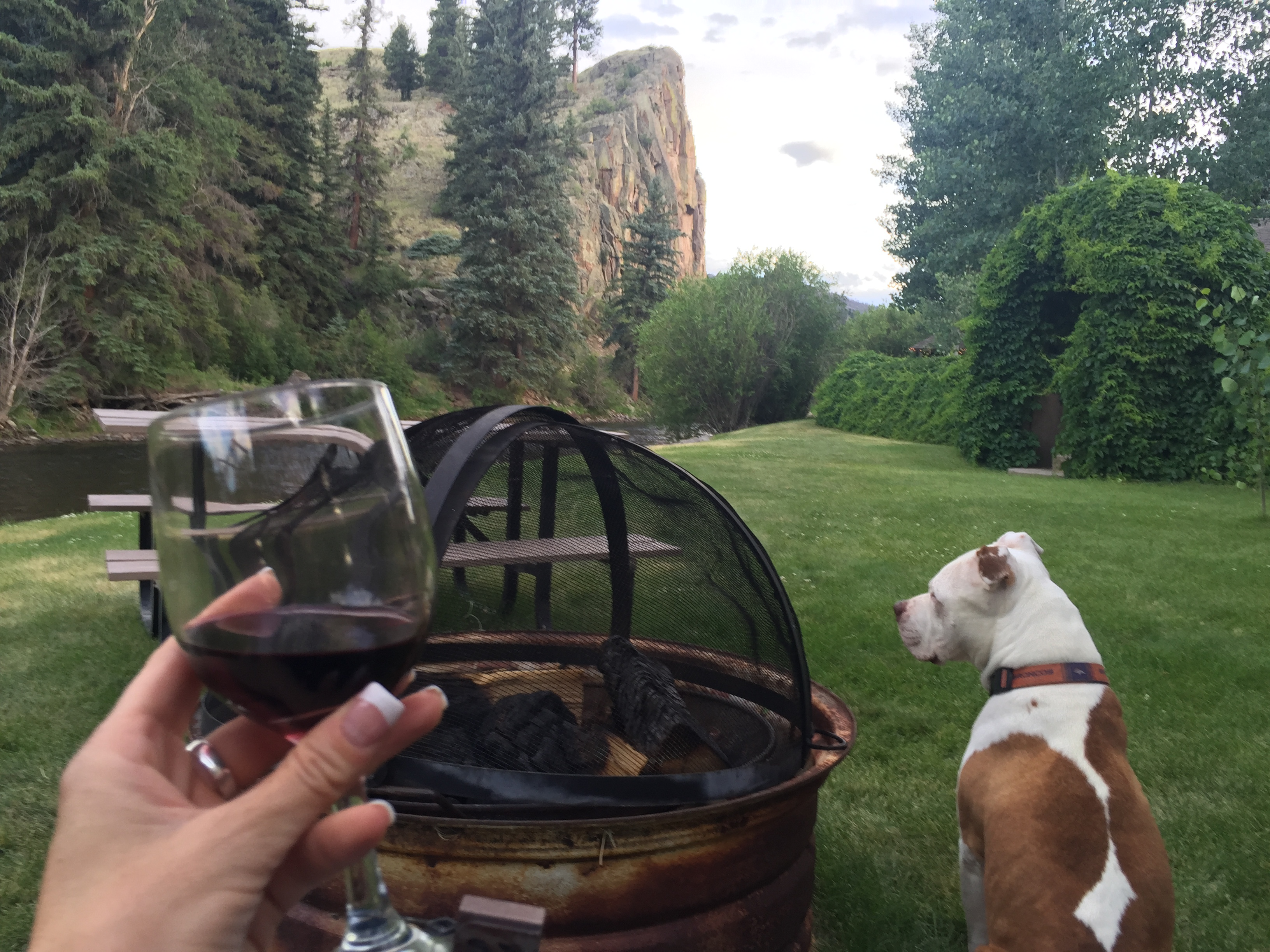 A manicured hand holds a wine glass, sitting near the firepit while looking out at the river with her dog