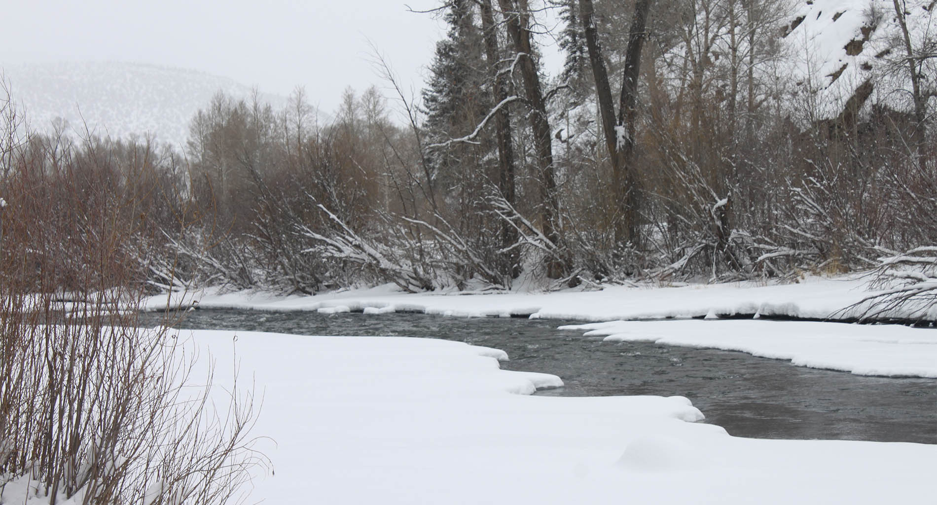 Winter river with white snow, grey sky
